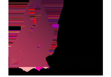 top-50-women-lawyers